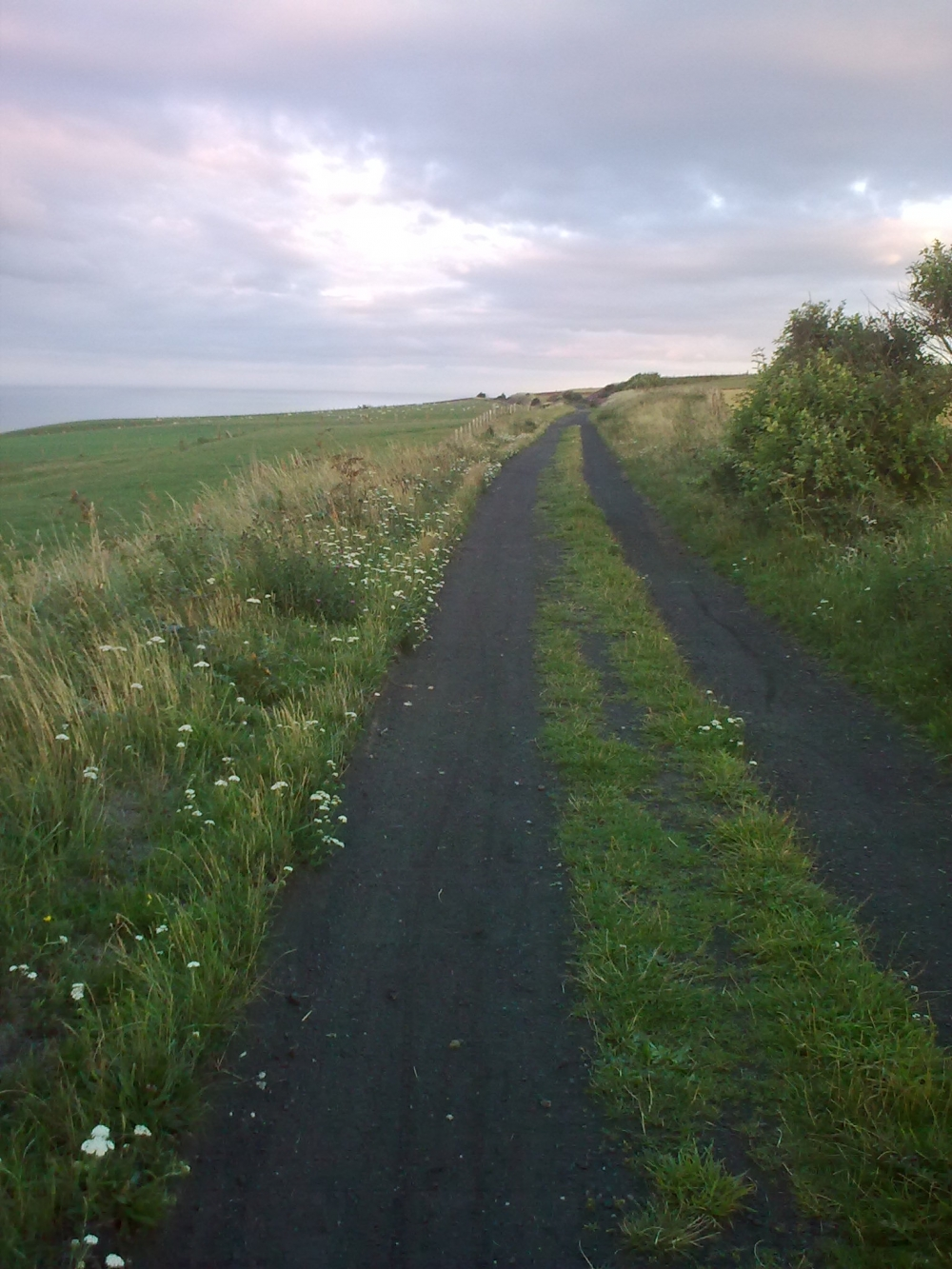 Old Railway Line,easily accessible from the farm.