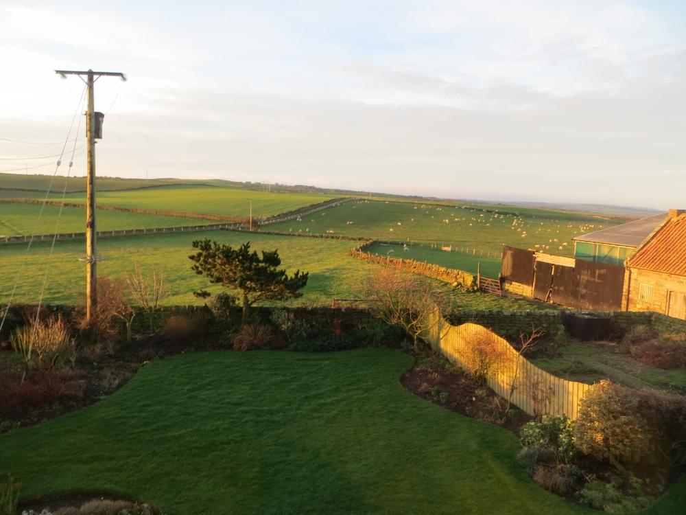 view across open fields