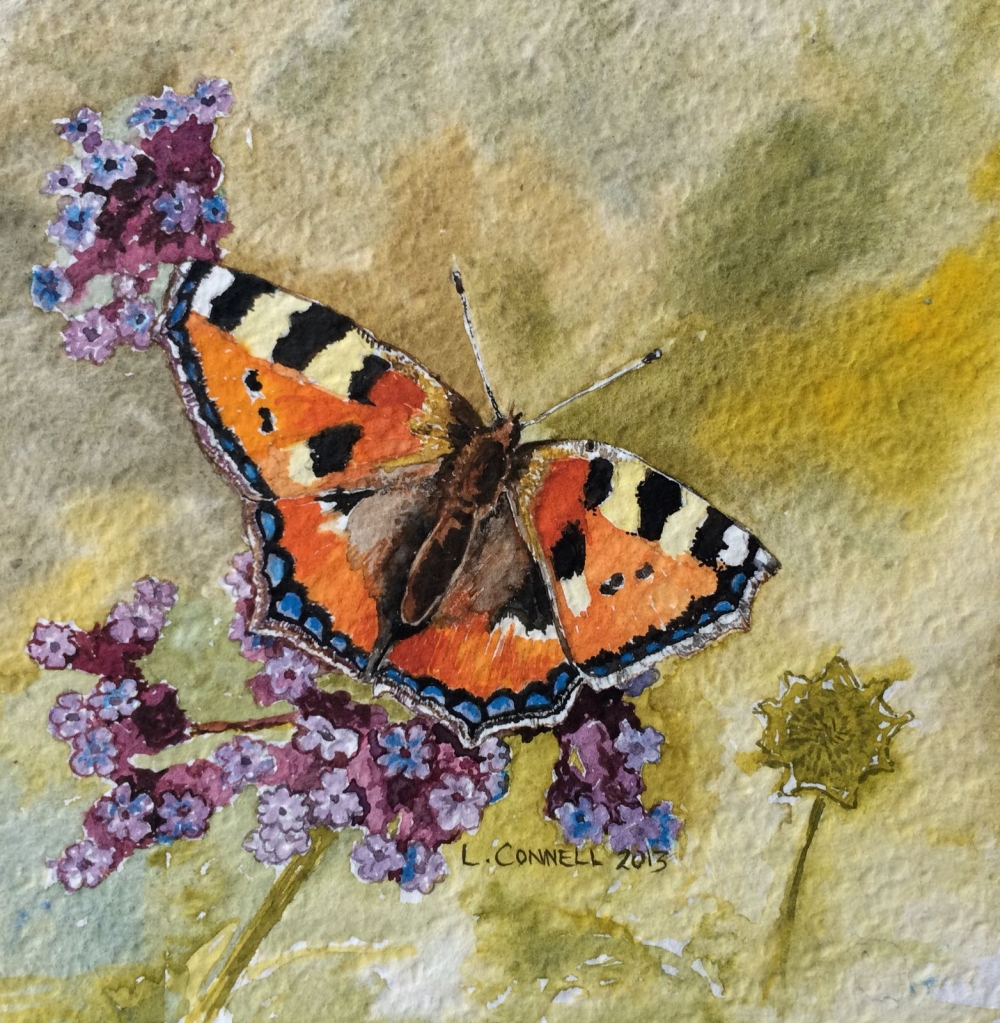 Tortoiseshell butterfly by Louise Connell