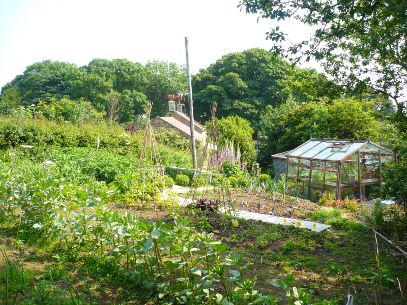 The vegetable garden at Skerry where Jan also grows flowers for the house and raspberries to make jam ...